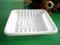 Fresh Food Tray