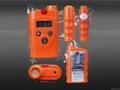 煤氣檢測儀
