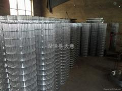 冷镀电焊网