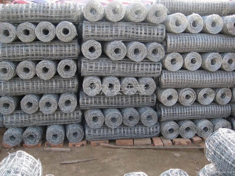 热镀电焊网 1