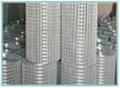 热镀电焊网 2