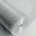 热镀电焊网 3