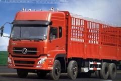 Kinland Cargo Truck