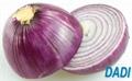 High quality onion