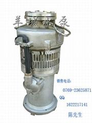 迪拜音樂噴泉泵100QYF-4