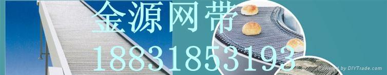 316不锈钢流水线输送带 3