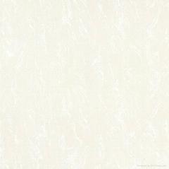 ceramic tile -- Soluble Salt Series WD** series