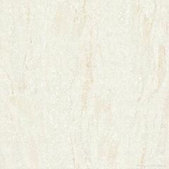 ceramic tile -- Na Fu Na Series C6S series
