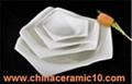 ceramic dinnerware 4