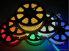 5050-60/m 5050-60珠貼片軟燈條