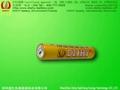 AAA LR03 AM4 alkaline battery