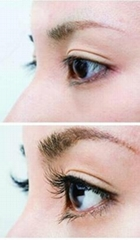 Rapid extension eyelash growing liquid