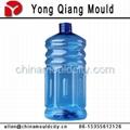 塑料吹瓶模具 4