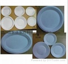 biodegradable sugarcane tableware