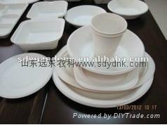 disposable biodegradable bagasse tableware