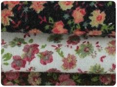 Brushed  fabric Napped c