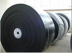nylon conveyor belt、