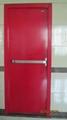 Steel Fireproof Door