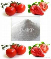 Mono Potassium Phosphate  Fertilizer (MKP 0-52-34)