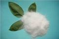 100% Water Soluble  NPK Fertilizer 1
