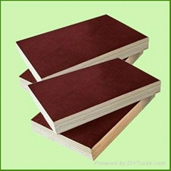 brown water proof film faced plywood