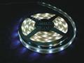 LED5050柔性軟燈條