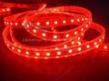 LED220V防水七彩燈帶