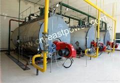 Diesel Oil Fired Boile