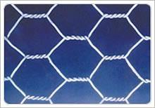 supply hexagonal wire mesh