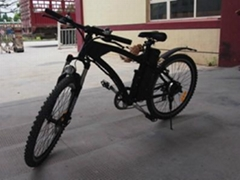 Electric Mountain Bike CE 250W