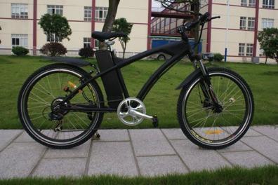 Electric Mountain Bike CE 250W 3