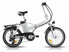 Electric Folding Bike CE 250W