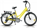 Electric Leisure Bike CE 250W