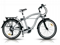 Electric Bike (B-EB-12 )CE 250W