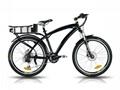 Electric Bike (B-EB-19) CE 250W