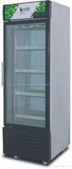 Ultra Low Temperature Upright Freezer Glass Door Upright Display Showcase Freeze