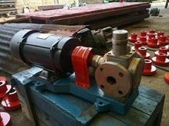 不锈钢圆弧泵