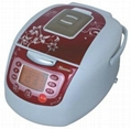 electrica rice cooker 1