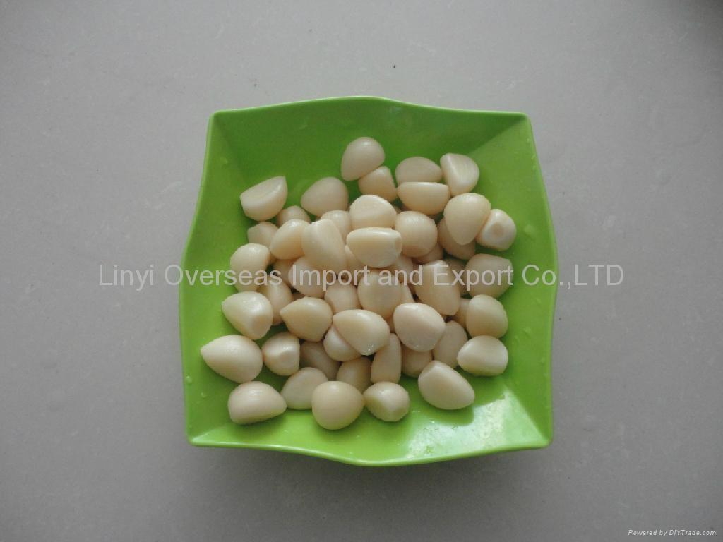 Garlic in brine  1