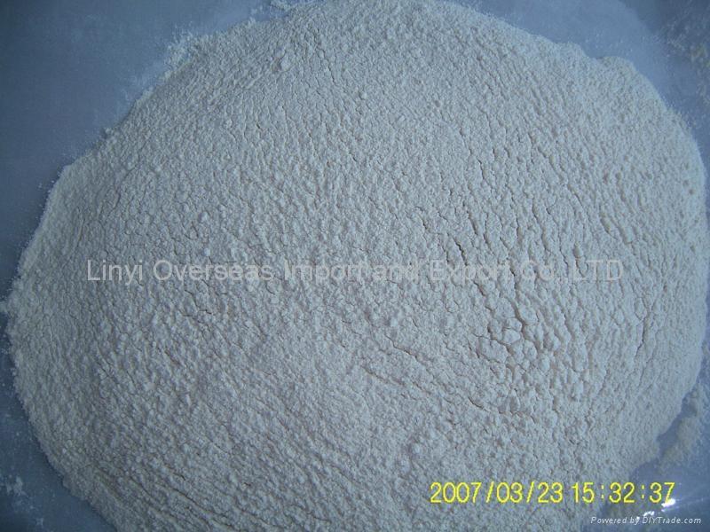 horseradish powder  1