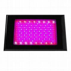 600w led grow light