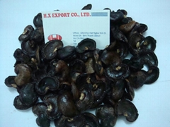Cashew nuts shell