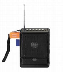 High receiver speaker radio