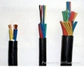 屏蔽電纜-盡在江西金一電纜有限公司 3