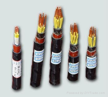 屏蔽電纜-盡在江西金一電纜有限公司 5