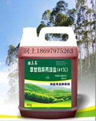 广西南宁林业  除草剂