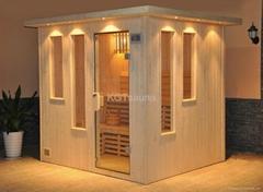 sauna house room with sauna stove
