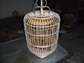 竹制鳥籠,鳥籠,精品鳥籠 5