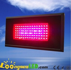 90W  UFO LED Grow Light For Flowering and Growth