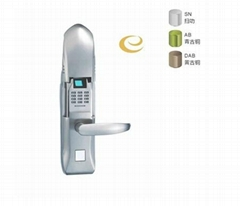 Best quality electronic fingerprint lock